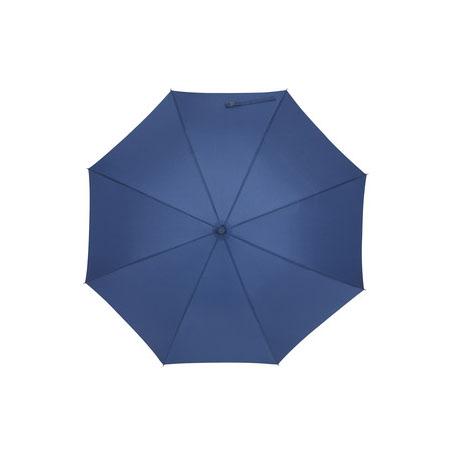 Paraguas ''Lambarda''